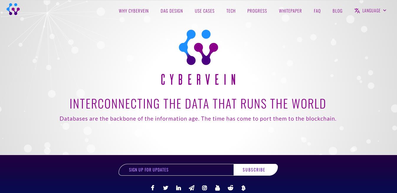 Qu'est-ce que CyberVein