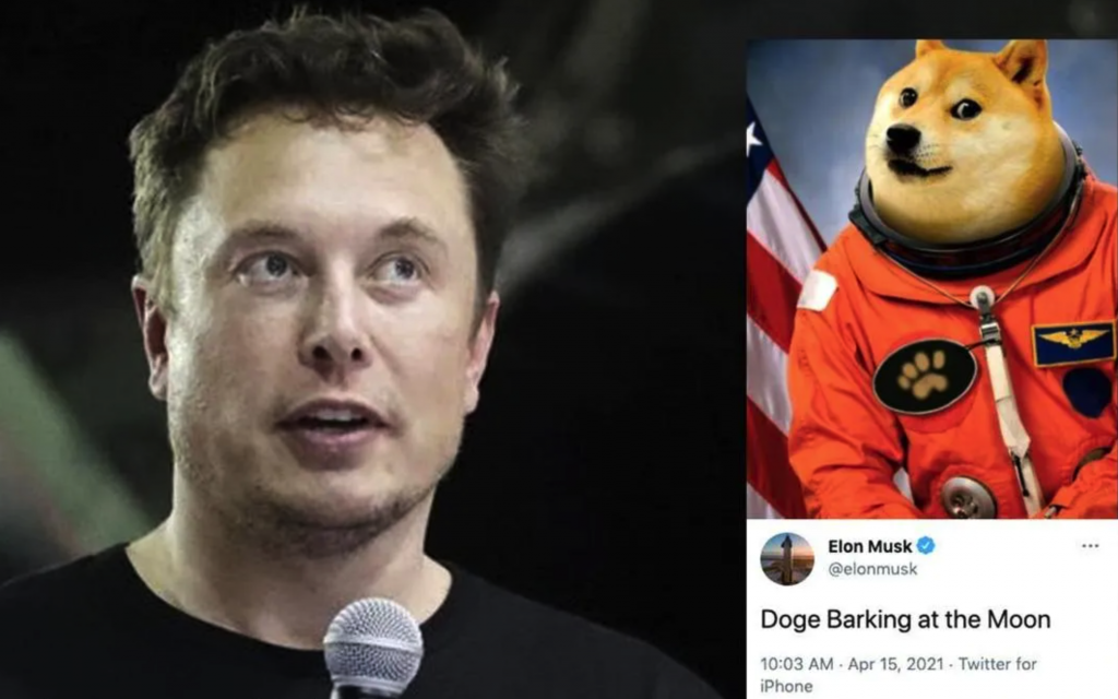 Why among so many coin projects, Tesla CEO, Elon Musk decided to choose DOGE and push the Dogecoin price pump? - AZCoin News