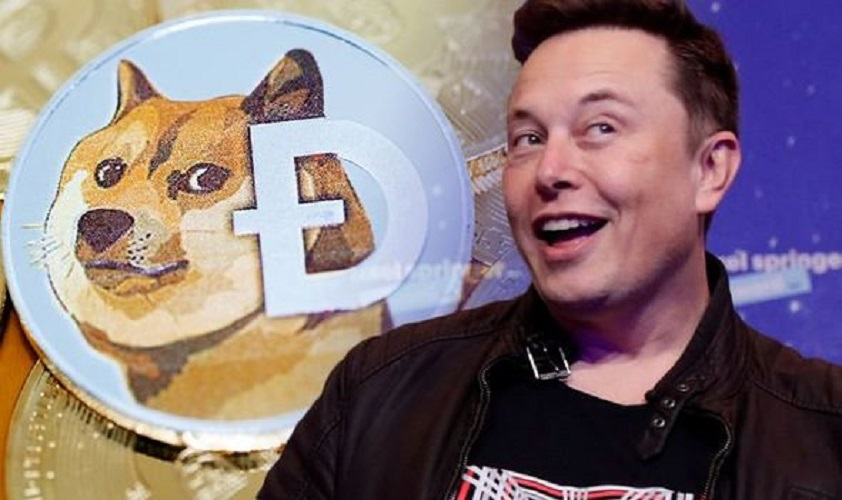 If you invested $ 1,200 of government-backed money in Dogecoin, you would have about $ 14 million today - AZCoin News